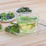 免疫力を高めてくれる作用のあるお茶!この時期にこそおすすめです