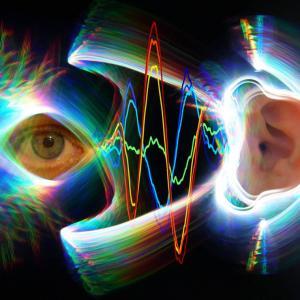 目となり耳となる