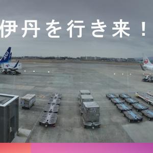 保安検査後に伊丹空港の逆ターミナルに行く方法!JALとANAの間を自由自在に行き来できる!