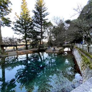 山中のオアシス「別府弁天池湧水」は自然好きには必見!概要や駐車場情報など