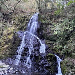 秋吉台から足を延ばして滝を観光「秋芳白糸の滝」の駐車場やアクセス方法は?