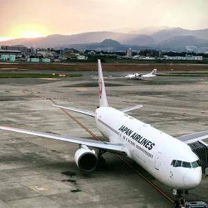 フライトを快適に!羽田空港JALラウンジでは国内線でもシャワーが使えます!