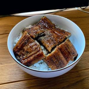 【ふるさと納税】鹿児島県大崎町のオススメ返礼品!うなぎの蒲焼きをお取り寄せ