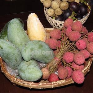 トロピカルフルーツうまいかまずいか《本音の評価と食べ方》