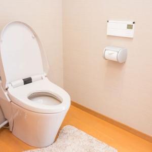 ミスしたくない!LDK一体型のトイレの間取り