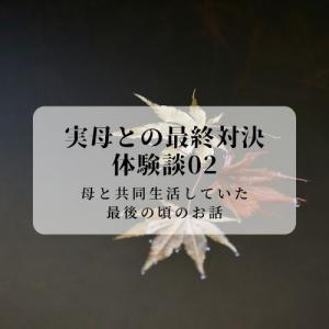 【体験談】実母との最終対決#2【心療内科通いと毒母・毒兄と詐欺】