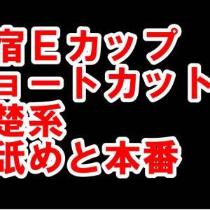 【体験142】新宿Eカップ「ショートカットの清楚系に乳舐めと本番」