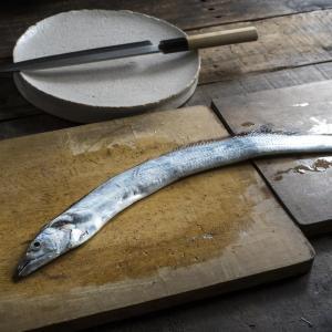 太刀魚(タチウオ)のルアー釣りを徹底解説|時期・オフショア・船タックル