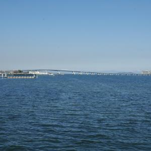 琵琶湖だけに生息?ビワマスのレシピ・旬な時期・釣り方・さばき方を解説