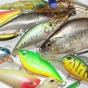 ルアー釣りにはどんな釣り糸が最適?釣り糸の種類や選ぶポイントを解説