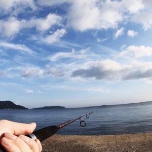 ジャリメってどんな餌?他の餌との違い、付け方、入手場所、保存方法、狙える魚をご紹介!