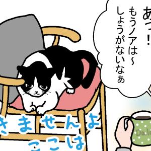 猫飼いの在宅勤務ってこうなの?