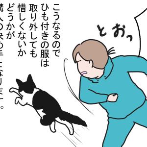 猫と遊ぶというのは…