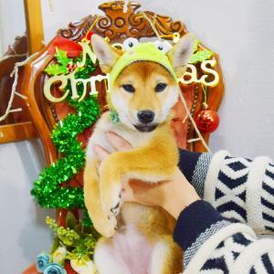 クリスマスだからといって…