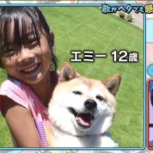 「テレビ千鳥」で我が家の先代柴犬エミーと娘の映像が!!