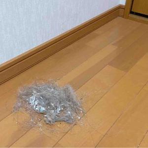 自分の部屋をきれいにしよう!①