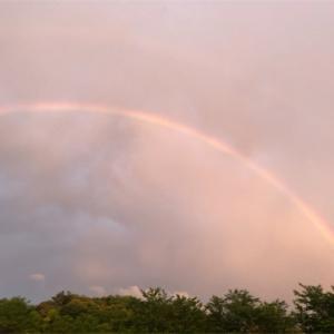 窓からの虹      ダブルレインボー