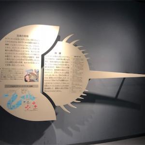 記憶旅行の旅 岡山県 笠原市立 カブトガニ博物館 (2019/8/21)