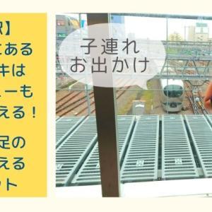 所沢駅に電車が見える屋外デッキ誕生!多彩な車両に子鉄が大興奮する新スポットに行ってみた