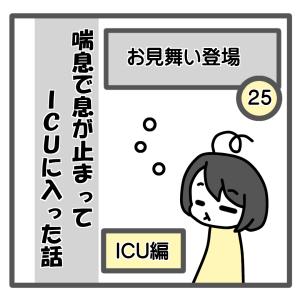 25、お見舞い到着【喘息でICUに入った話】
