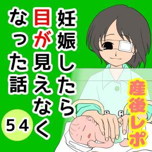 妊娠したら目が見えなくなった話【54】