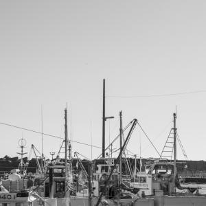午後の静かな漁港