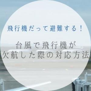飛行機だって避難する!台風で飛行機が欠航した際の対応方法