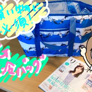 夏の買い物に必須!保冷バッグ リンネル2021年7月号レジかごサイズのBIG保冷バッグ付録レポ