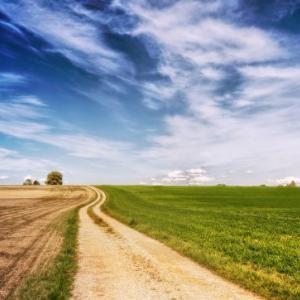 地積規模の大きな雑種地の相続税評価ついて納税者が鑑定評価額を主張した裁判例(平成30年10月30日東京地裁)