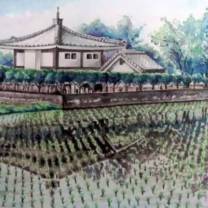 2020.07 田園風景(糸島市)