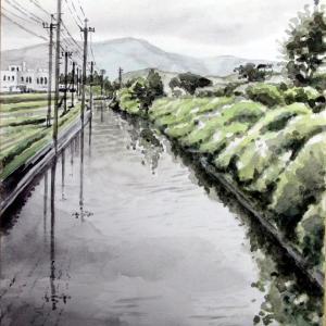 2020.07 用水路より二丈岳を望む(糸島市)