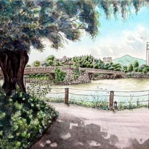 2020.09 夏の丸田池の風景(糸島市)