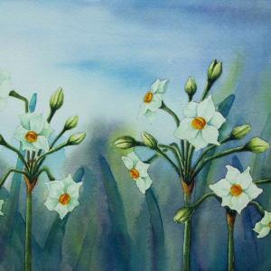 2021.01 水仙の花