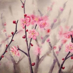2021.02 紅梅の花