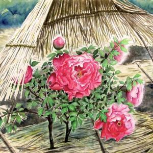 2021.02 冬牡丹の花