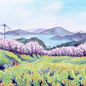 2021.03 加茂ゆらりんこ橋周辺の春の装い・菜の花と桜(糸島市)
