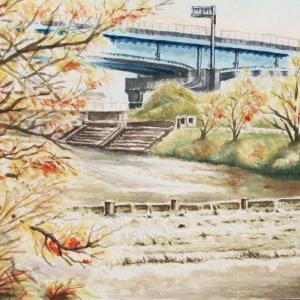 2021.10 秋の高架下の瑞梅寺川(糸島市)