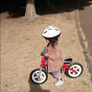 脳梗塞の夫、ひがむ 岸根公園で自転車デビューの孫