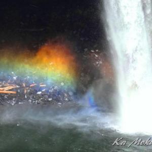 知ってるか? 滝に虹が、ではなく 虹が滝のように!
