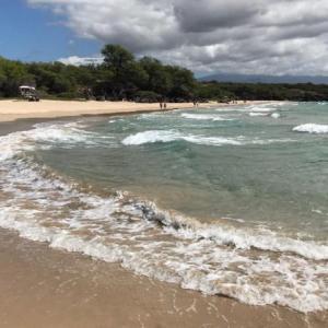 ハワイ島週刊ニュース 2020年5月#4