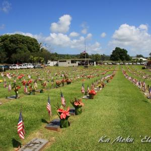 ハワイ島フォト日記 これはアメリカの墓参りだね