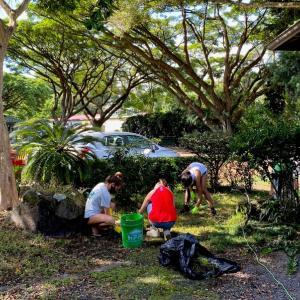 ハワイ島フォト日記 久しぶりのボランティア作業は いい汗かいたよ!