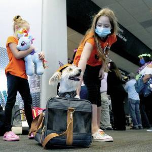 最新コロナ対策 渡航検疫のルールが発表されました