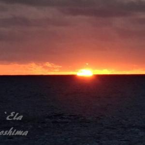 ハワイ島フォト日記 この岬を訪れなければハワイ島は語れないよね!