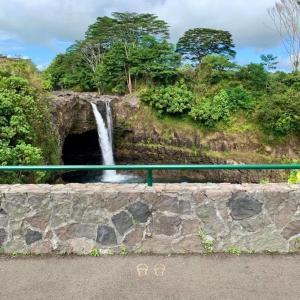 ハワイ島フォト日記 笑っちゃう!ソーシャルディスタンス・アラカルト!