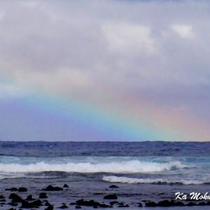 ハワイ島フォト日記 137号線のビーチは一つ一つが個性豊か!