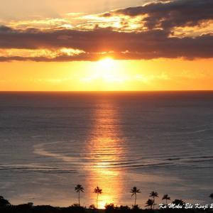 Zoom セミナー第4弾 ハプナビーチから素敵なレイつくりと最高の夕陽に乾杯!