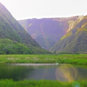 ハワイ島週刊ニュース 2,021年7月#2 観光客、地震、花火、山羊、ワイピオ渓谷