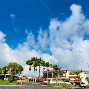 ハワイ島フォト日記 ハワイ大学キャンパス内をランニング!