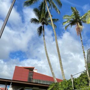 ハワイ島フォト日記 ハワイ大学内キャンパスをちょこっとね!